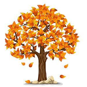 Autumn Gardening Information