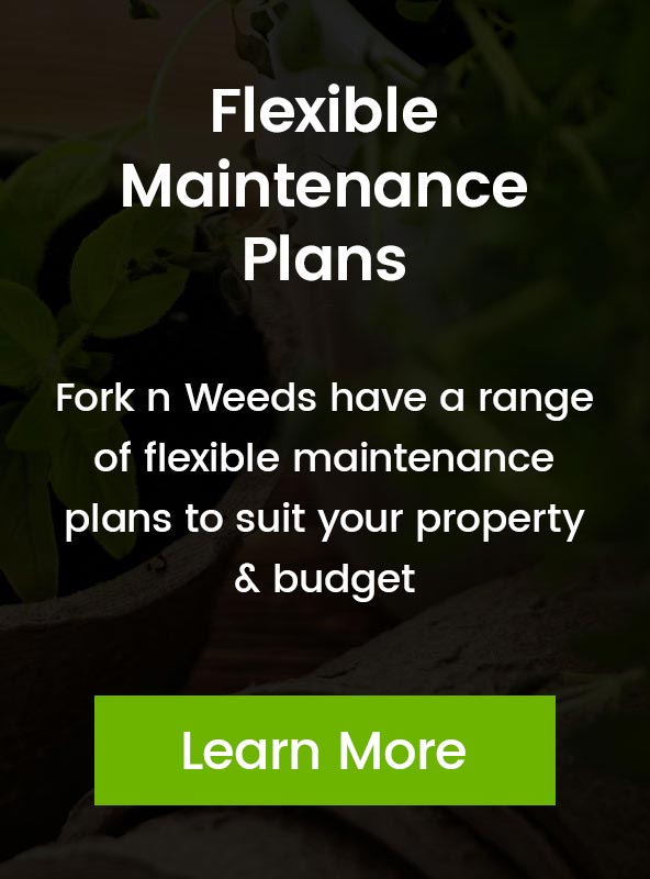 Gardening Maintenance Plans
